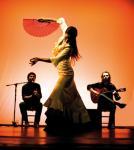 """""""Langenhagener ECHO"""" präsentiert: tablao flamenco: """"Cositas Flamencas"""""""