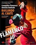 Compania Flamenca ANTONIO ANDRADE